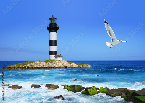 lighthouse on rocks, sea  coast, flying seagull
