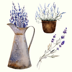 Naklejka Do salonu Provence lavender decor