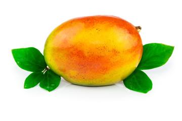 Mango fruit with leaves
