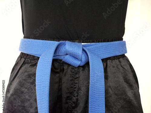 Kampfsport blauer Gürtel nah
