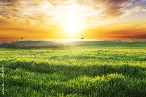 fototapeta na ścianę zachód słońca