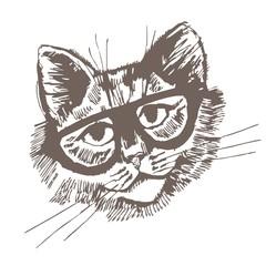 Fototapeta Kot кот