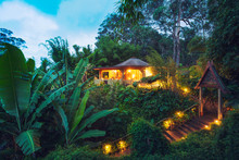 Tropical Home In The Jungle At...