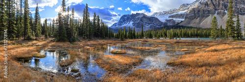 Montage in der Fensternische Kanada Nature Canada