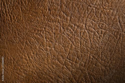 fototapeta na drzwi i meble prawdziwa skóra bydlęca tekstury