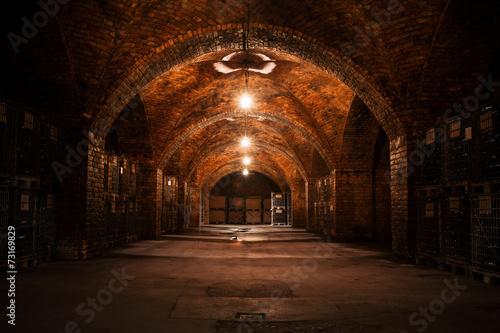 Photo beverage storage cellar