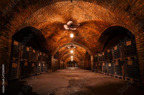 Foto beverage storage cellar