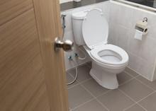 White Flush Toilet In Modern B...