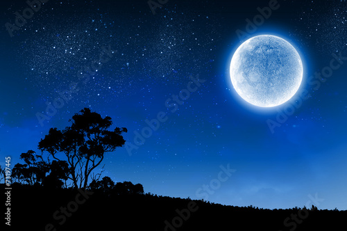 Printed kitchen splashbacks Night Full moon