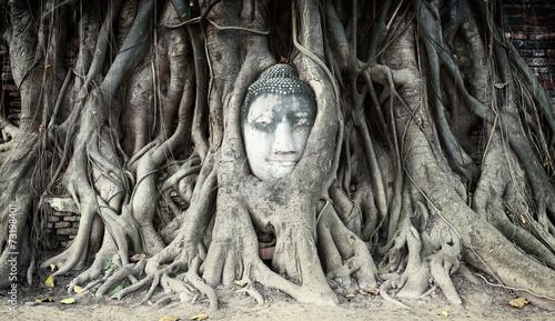 Photo  Travel to Thailand, Ayutthaya. Old tree Buddha stone sculpture.
