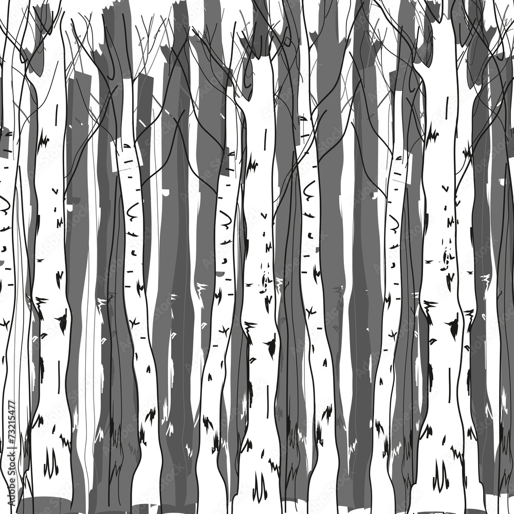 Background of birch trunks