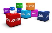 Internet Domain Name Concept