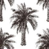 hand drawn palm tree seamless - 73243648
