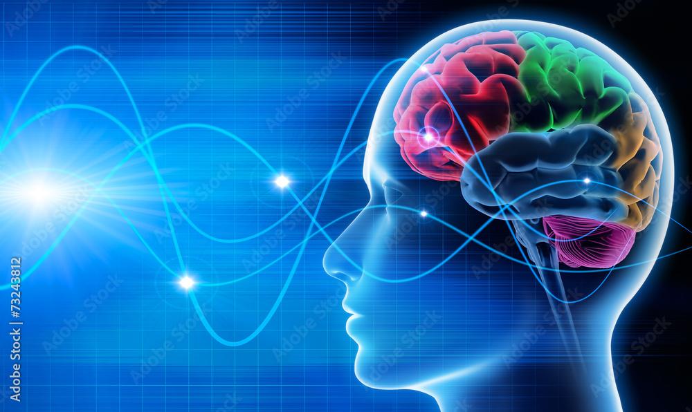 Fotografie, Tablou  Gehirn - Schwingungen 1