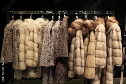 Fotografie, Obraz  Various fur coats