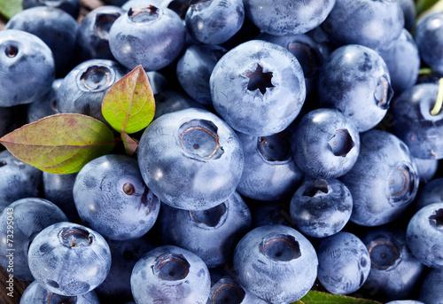 Türaufkleber Makrofotografie Ripe blueberries - food background. Macro shot.