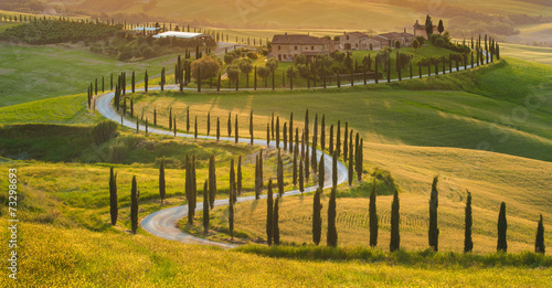Beautiful cypress-lined road in the light of the setting sun Fotobehang