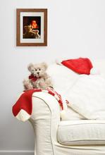 Teddy Waiting For Christmas