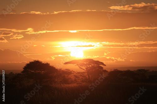 Printed kitchen splashbacks Brown Sunrise over Serengetti