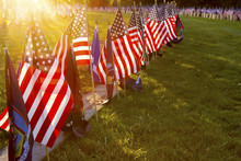 Sunlight On Soldiers Graves At...