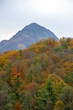 autumn forest and mountain views in Rosa Khutor, Sochi, Russia