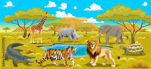 Poster Chambre d enfant African landscape with animals.