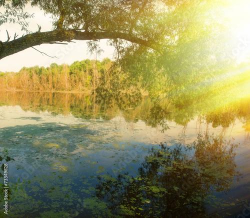 Fototapety, obrazy: landscape