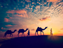Two Cameleers (camel Drivers) ...
