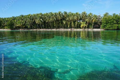 Spoed Foto op Canvas Eiland Tropical island shore with lush vegetation Panama