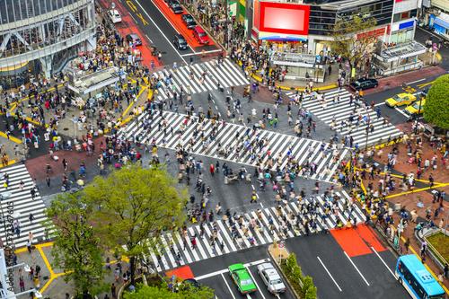 Poster Tokyo Shibuya, Tokyo, Japan at Shibuya Crossing