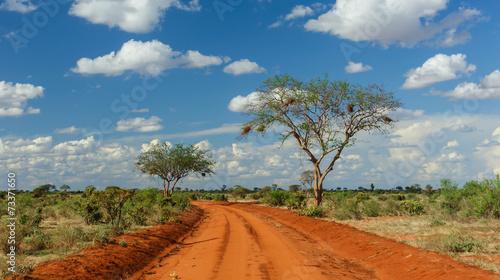 Poster Afrika Rote Erde in Tsavo, Kenia