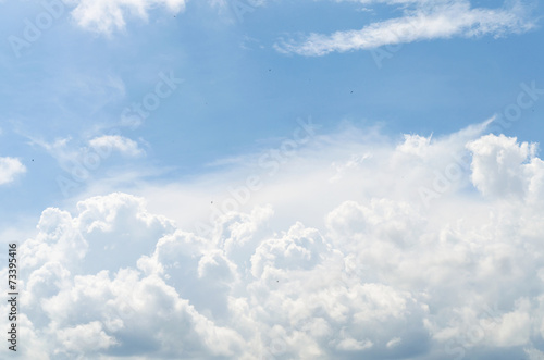Tuinposter Hemel Blue sky and white cloud