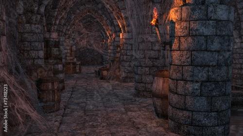 Fotografie, Obraz  cave sous-sol 2