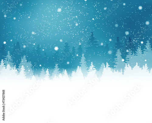 Fototapeta Winter landscape with fir trees and snowfall obraz