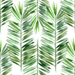 fototapeta palma w akwarelach