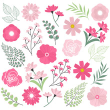 Wedding Pink Flowers
