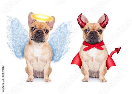 Tuinposter Franse bulldog Devil and Angel