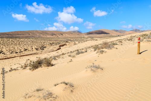 Foto op Aluminium Blauw Wooden sign on sand dune, Sotavento beach, Fuerteventura island