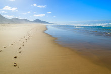 Footprints In Sand On Cofete Beach, Fuerteventura Island