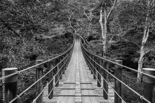 most-wiszacy-shiomi-falls