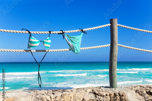 Fotografie, Obraz Blue woman's swimming suit hanging on white ropes
