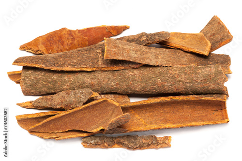 Vászonkép Cinnamomum camphora or Cinnamon bark