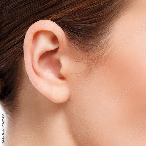ear closeup Fotobehang