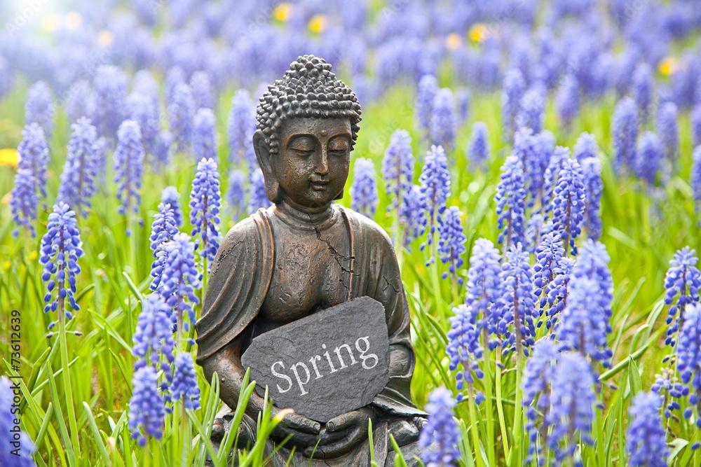 Spring Fototapeta