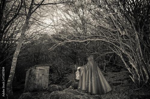 Stampe  Oscura presenza nel bosco