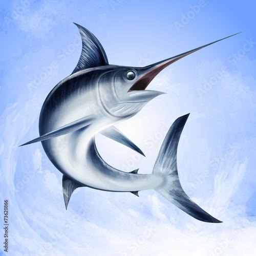 Photo  swordfish