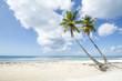 Idyllic Caribbean coastline