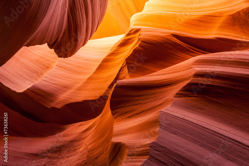 Garden Poster Brown Sandstone texture in Antelope canyon, Page, Arizona