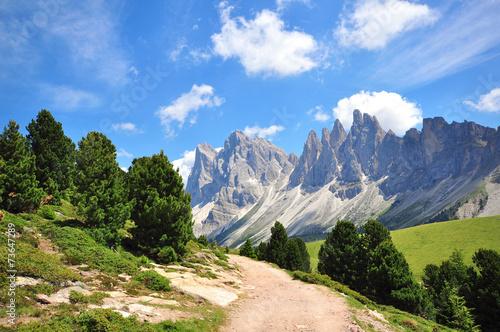 Fotografie, Obraz  Turistická cesta v Alpách