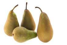 Four Conference Pears